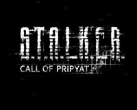 Игра Сталкер Зов Припяти Торрент (S.T.A.L.K.E.R.: Call of Pripyat)